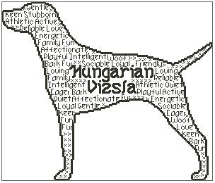 Hungarian Vizsla In Words