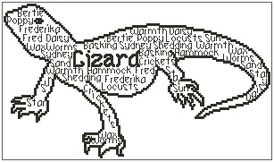 In Words - Lizard Personalised