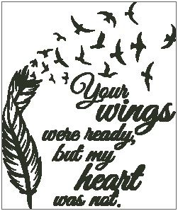 Your Wings Were Ready - Feather with Birds