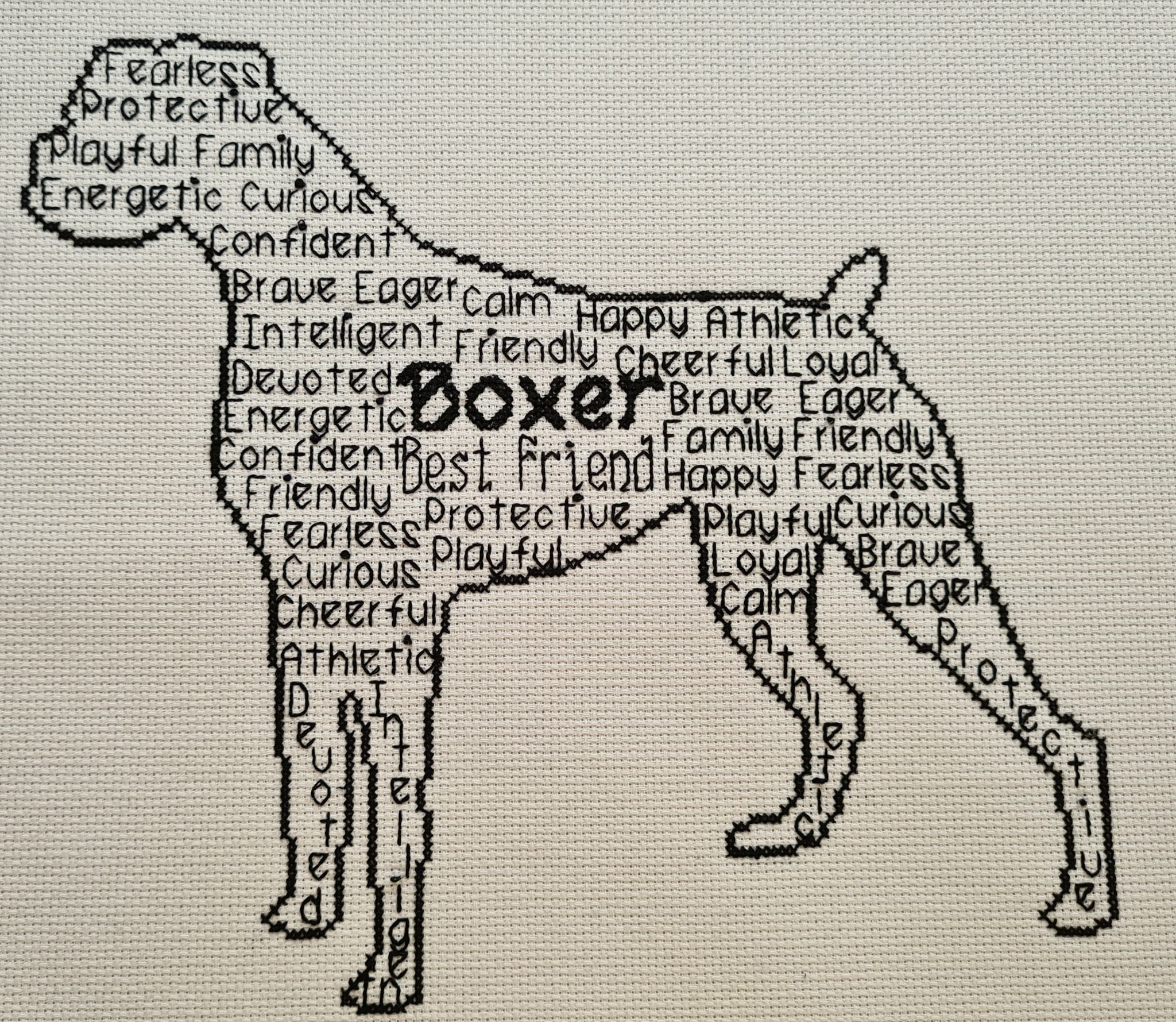 Boxer In Words