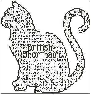 British Shorthair In Words
