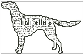 Irish Setter In Words