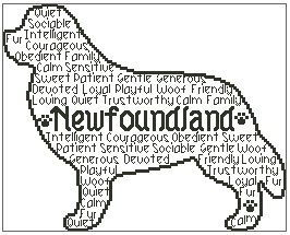 Newfoundland In Words