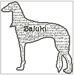 Saluki In Words