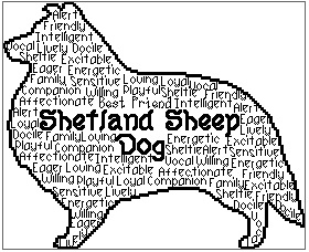 Shetland Sheep Dog In Words