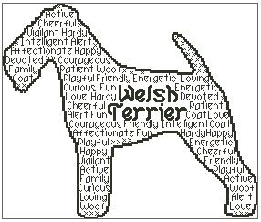 Welsh Terrier In Words